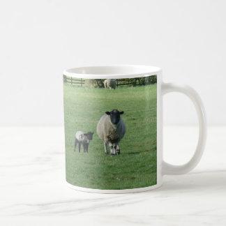 Sheep in the field coffee mug
