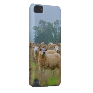 Sheep iPod Touch 5G Covers