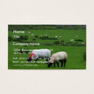 Sheep Near Deerpark Ireland Business Card