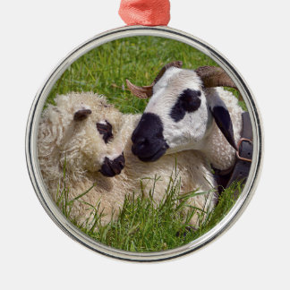 Sheep of Thones et Marthod Metal Ornament