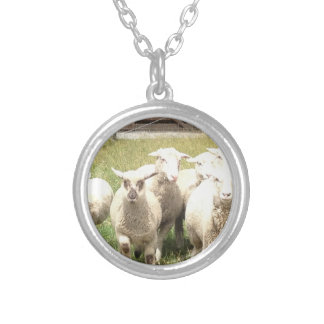 Sheep Stampede Silver Plated Necklace