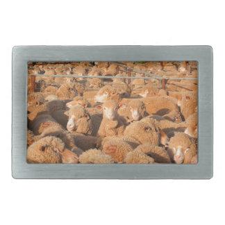 Sheep waiting to be shorn rectangular belt buckle