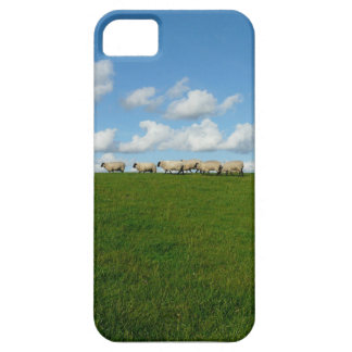 Sheep walking iPhone 5 cases