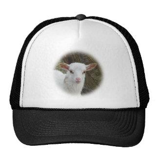 Sheep - White Lamb Trucker Hat