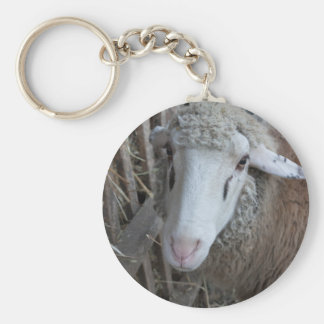 Sheep with hay basic round button keychain