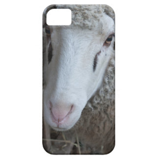 Sheep with hay case for the iPhone 5