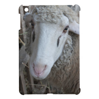 Sheep with hay iPad mini cases