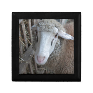 Sheep with hay jewelry boxes