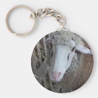 Sheep with hay keychain