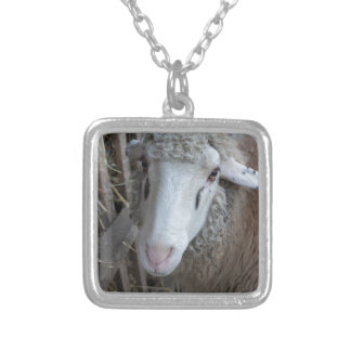 Sheep with hay silver plated necklace