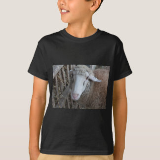 Sheep with hay T-Shirt