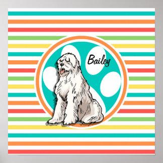 Sheepdog Bright Rainbow Stripes Poster