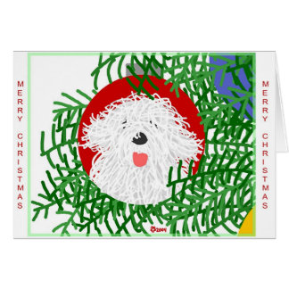 Sheepdog Christmas Card