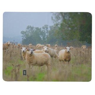 Sheeps Journals