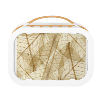Sheer Cream Beige Lace Leaves Lunch Box