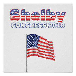 Shelby Patriotic American Flag 2010 Elections Poster