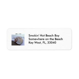 Shell, Beach