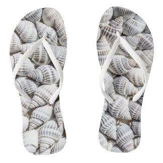 shell beach thongs flip flops women