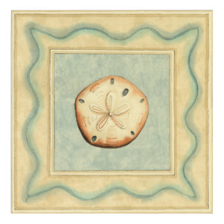 Shell Collector Acrylic Wall Art