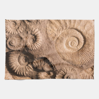 Shell Fossils Kitchen Towel