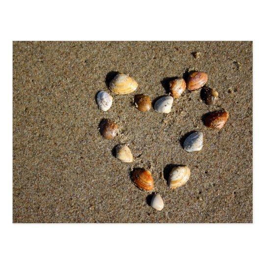 Shell heart postcard