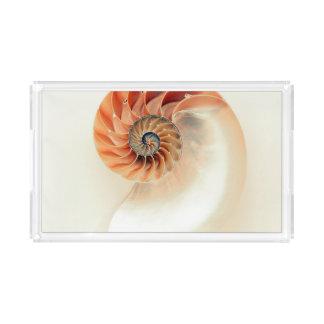 Shell Of Life Acrylic Tray