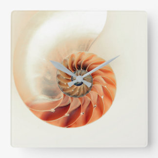 Shell Of Life Square Wall Clock