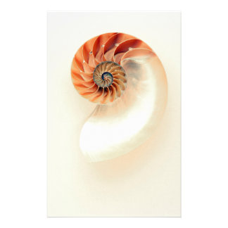 Shell Of Life Stationery