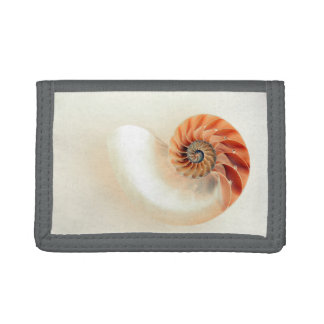Shell Of Life Trifold Wallets