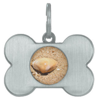 SHELL ON BEACH QUEENSLAND AUSTRALIA PET TAGS