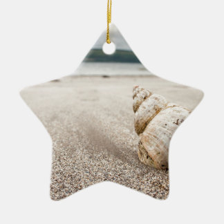Shell_on_Lady_Bay_Beach Ceramic Star Ornament