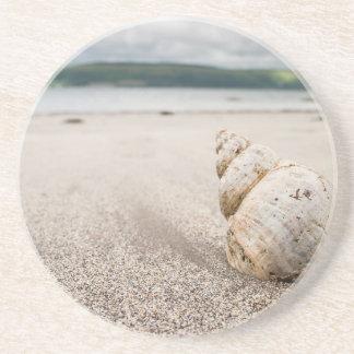 Shell_on_Lady_Bay_Beach Drink Coaster