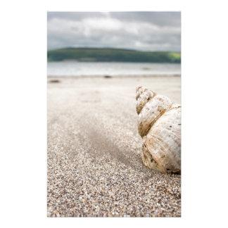 Shell_on_Lady_Bay_Beach Stationery