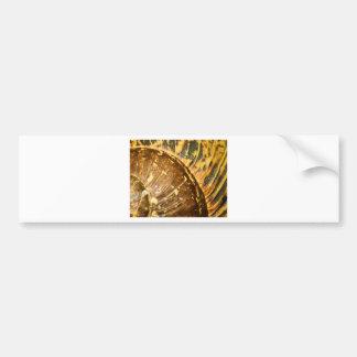 Shell Pattern Bumper Sticker