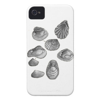 Shell sketch iPhone 4 cover