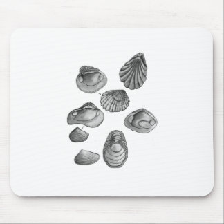 Shell sketch mouse pad