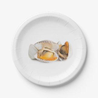 Shellfish Paper Plate