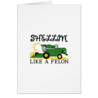 Shellin Like a Felon Card