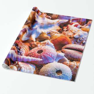 Shells 1 Alt Wrapping Paper