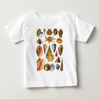 Shells Baby T-Shirt