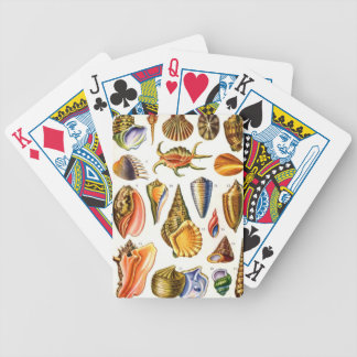 Shells Bicycle Playing Cards