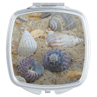 Shells compact mirror