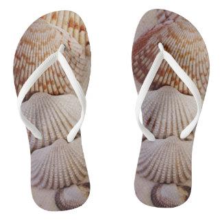 Shells flip flop