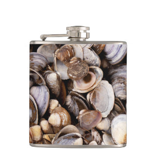 Shells in Mud Hip Flask