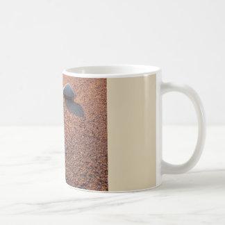 Shells in sunrise coffee mug