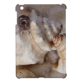 Shells iPad Mini Cases