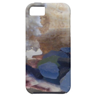 Shells of Bermuda Case For The iPhone 5