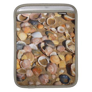 Shells On A Sandy Beach | Andalusia, Spain Sleeves For iPads