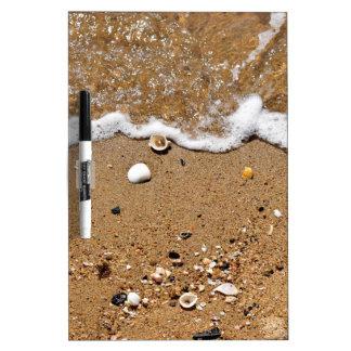 SHELLS ON BEACH QUEENSLAND AUSTRALIA DRY ERASE BOARD