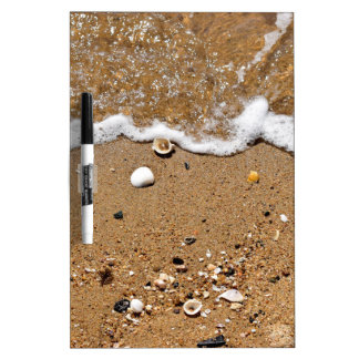 SHELLS ON BEACH QUEENSLAND AUSTRALIA DRY ERASE BOARDS